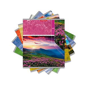Тетради 40-48 листов