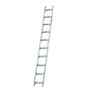 Лестницы для крыш