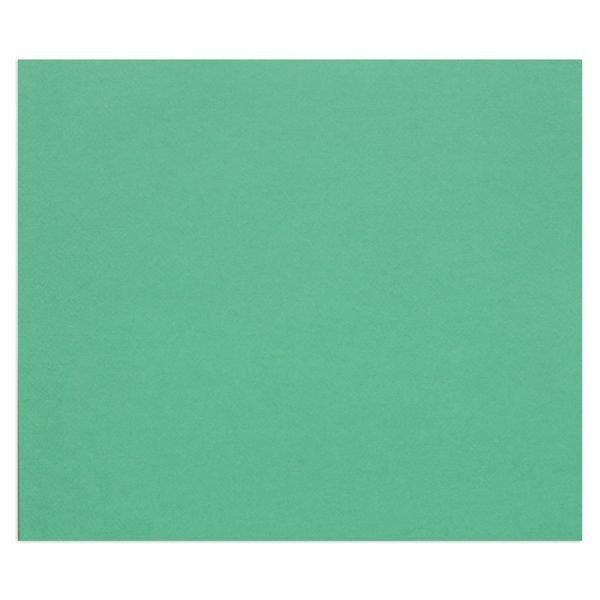 "Цветная бумага 500*650мм., Clairefontaine ""Tulipe"", 25л., 160г/м2, тёмно-зелёный, лёгкое зерно"