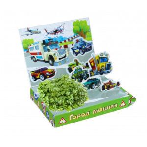 """Набор для выращивания Бумбарам """"Живая открытка.Город машин"""""""